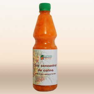 suc-catina-2